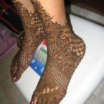 Indian Mehndi Designs 2013  004