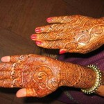 Indian Mehndi Designs 2013 009