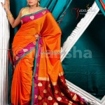 Latest Designer Sarees 2013 in Fashion 004