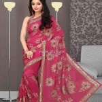 Latest Designer Sarees 2013 in Fashion 005