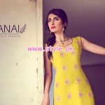 Sanai Latest Winter Formal Wear Collection 2012 006