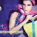 Hobo Handbags Collection 2013 by Hub 004