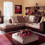 Indian Home Decoration Ideas 2013 009