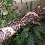 Mehndi Designs 2013 For Women 0015