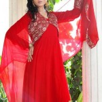 Naj Bridal & Party Dresses 2013 For Women 006