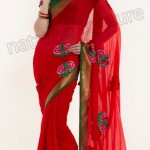 Natasha Couture Winter Sarees Collection 2013 For Women 0021