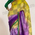Natasha Couture Winter Sarees Collection 2013 For Women 0022