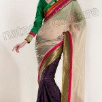 Natasha Couture Winter Sarees Collection 2013 For Women 003