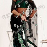 Natasha Couture Winter Sarees Collection 2013 For Women 009