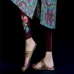 Pareesa Embroidered Tights Winter Collection 2013 For Women 002