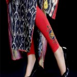 Pareesa Embroidered Tights Winter Collection 2013 For Women 003