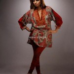 Shamaeel Ansari New Winter Dresses 2013 for Women 002