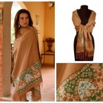Shawls Designs 2013 For Women 0010