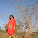Barira Collection Spring Summer Line 2013 for Ladies 006