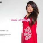 Pinkstich Latest Party Wear Collection 2013 001