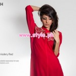 Pinkstich Red Dresses 2013 For Valentine's Day 005