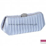 Sparkles Clutches Collection 2013 For Women 0016