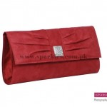 Sparkles Clutches Collection 2013 For Women 0020