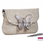 Sparkles Clutches Collection 2013 For Women 004