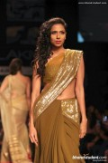 Manish Malhotra Spring Collection 2013 At Lakme Fashion Week 0017