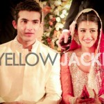 Shehroz Sabzwari Biography And Pictures (1)