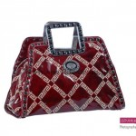 Sparkles Handbags Collection 2013 For Women 0010