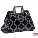 Sparkles Handbags Collection 2013 For Women 0018