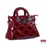 Sparkles Handbags Collection 2013 For Women 0021