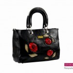 Sparkles Handbags Collection 2013 For Women 004