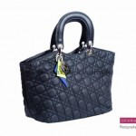 Sparkles Handbags Collection 2013 For Women 007