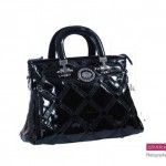 Sparkles Handbags Collection 2013 For Women 009