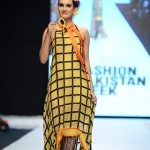 Ayesha Ibrahim Latest Fashion Dresses For Girls At Fashion Pakistan Week 2013 006