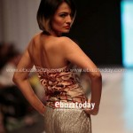 Zari Faisal Collection 2013 At Fashion Pakistan Week 0010