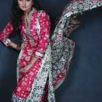 Image Premium Lawn Collection 2013 for Women 004