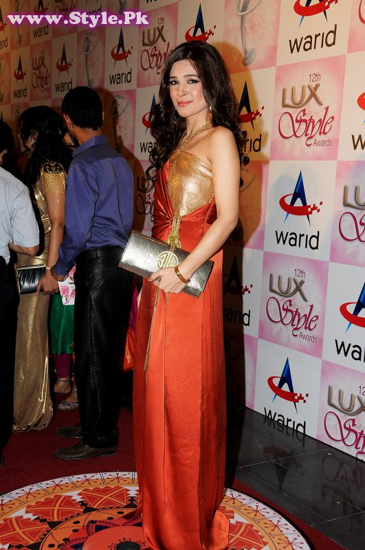 Shehla Chatoor takes over the Lux Style Awards 2013 Red Carpet