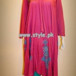 Pankheri Party Wear Collection 2013 For Women 005