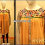 Pankheri Party Wear Collection 2013 For Women 009