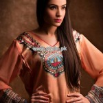 Resham Ghar Eid Collection 2013 For Girls 002