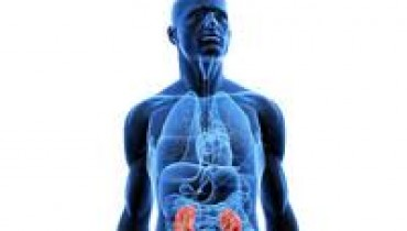 Role Of Kidneys' Tests For Diabetes Patients