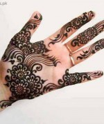 Latest Mehndi Designs 2013 for Eid 015
