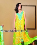 Pakistani Model Momal Sheikh 008