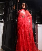 Aarasteh By Faryal Saree Collection 2013 For Women  008