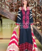 Charizma Fall Winter Collection 2013 for Women 012