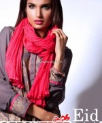 Beech Tree Eid Ul Azha Collection 2013 for Women 003