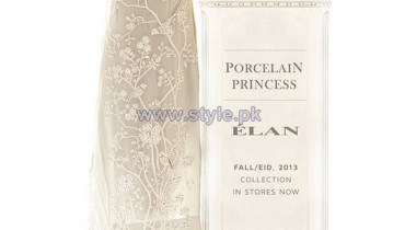 Elan Designer Dresses 2013 For Women7