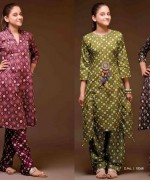 Sitara Textiles Winter Dresses 2013 For Women 001