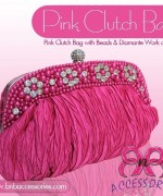BnB Accessories Fancy Clutches 2013-2014 For Women 001