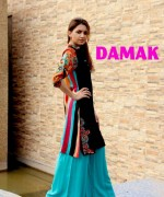 Damak Winter Dresses 2013-2014 For Women 001