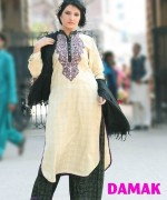 Damak Winter Dresses 2013-2014 For Women