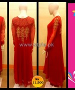 Pankheri Party Wear Dresses 2013-2014 For Winter 3
